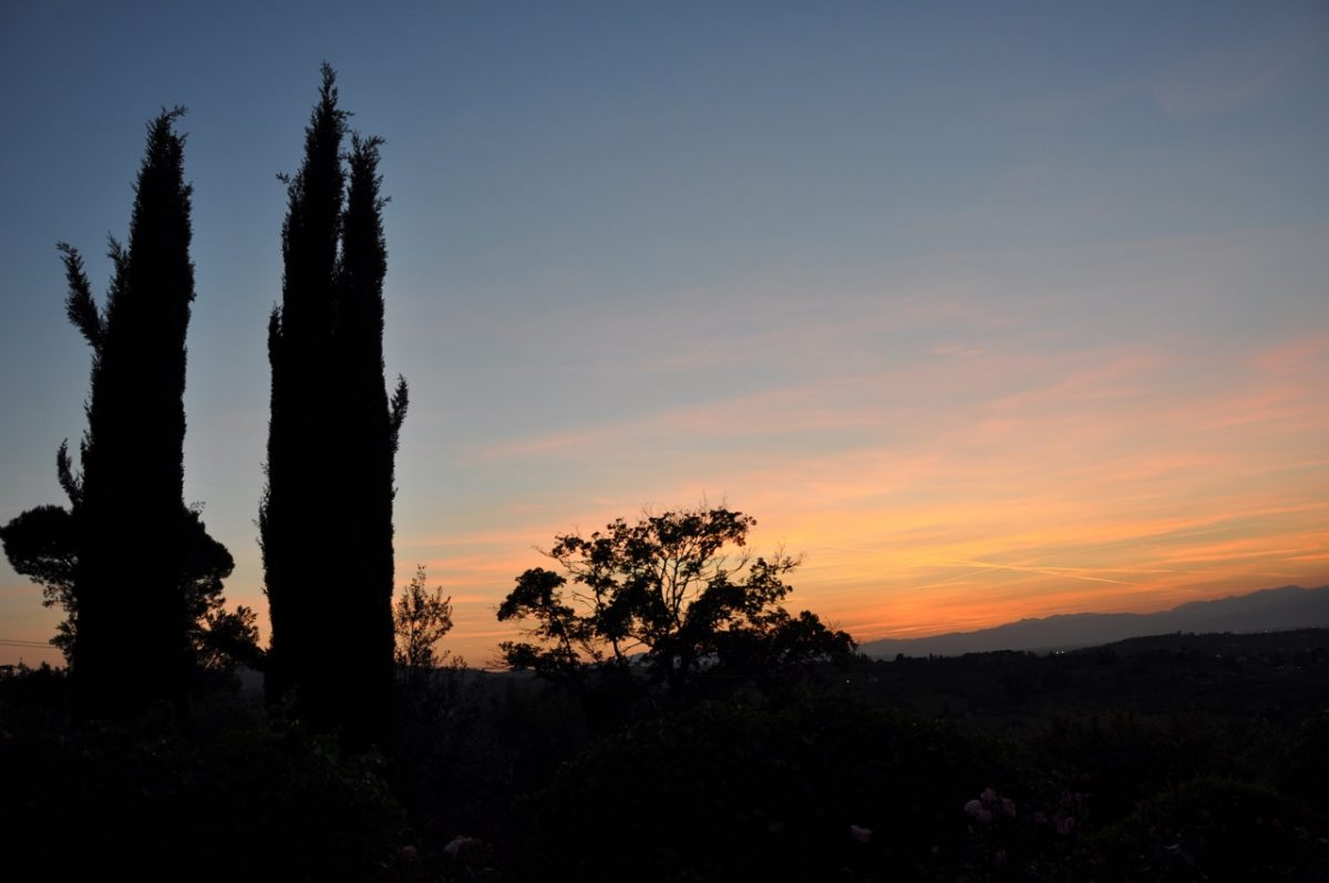 Italian sunset, orange to pink to blue, over silhouettes of two narrow trees and some shrubbery in the foreground with low mountains in the background.