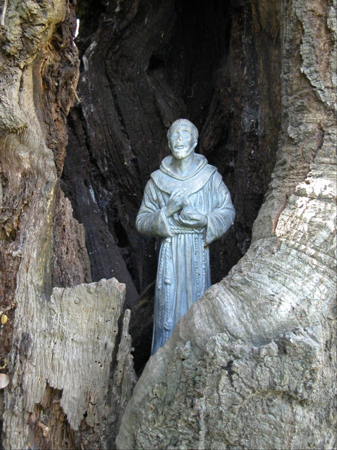 Statue of St. Francis in a small rock grotto.