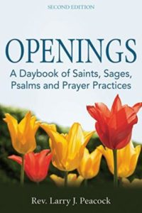 Cover image for Openings: A Daybook