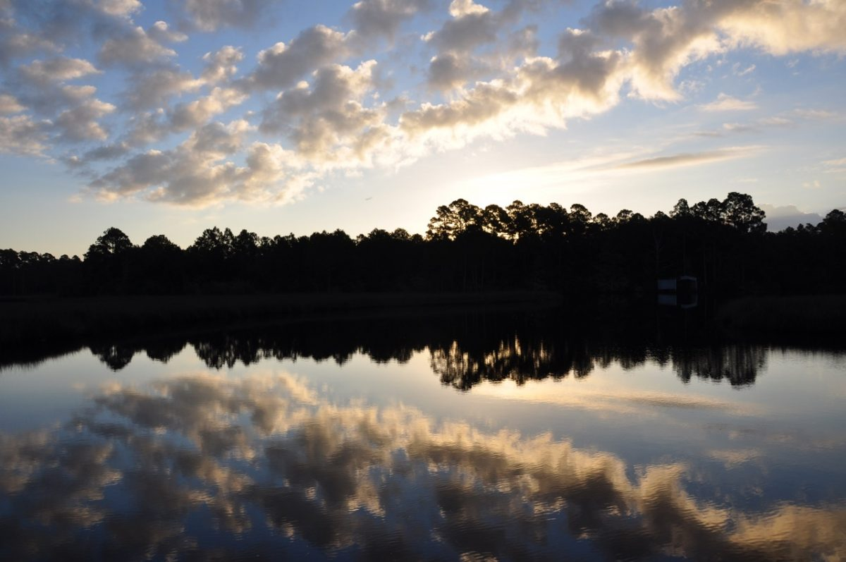 Predawn sky on a clear morning with white clouds. The silhouette of a forested shore over a glassy lake reflects the brightening sky.